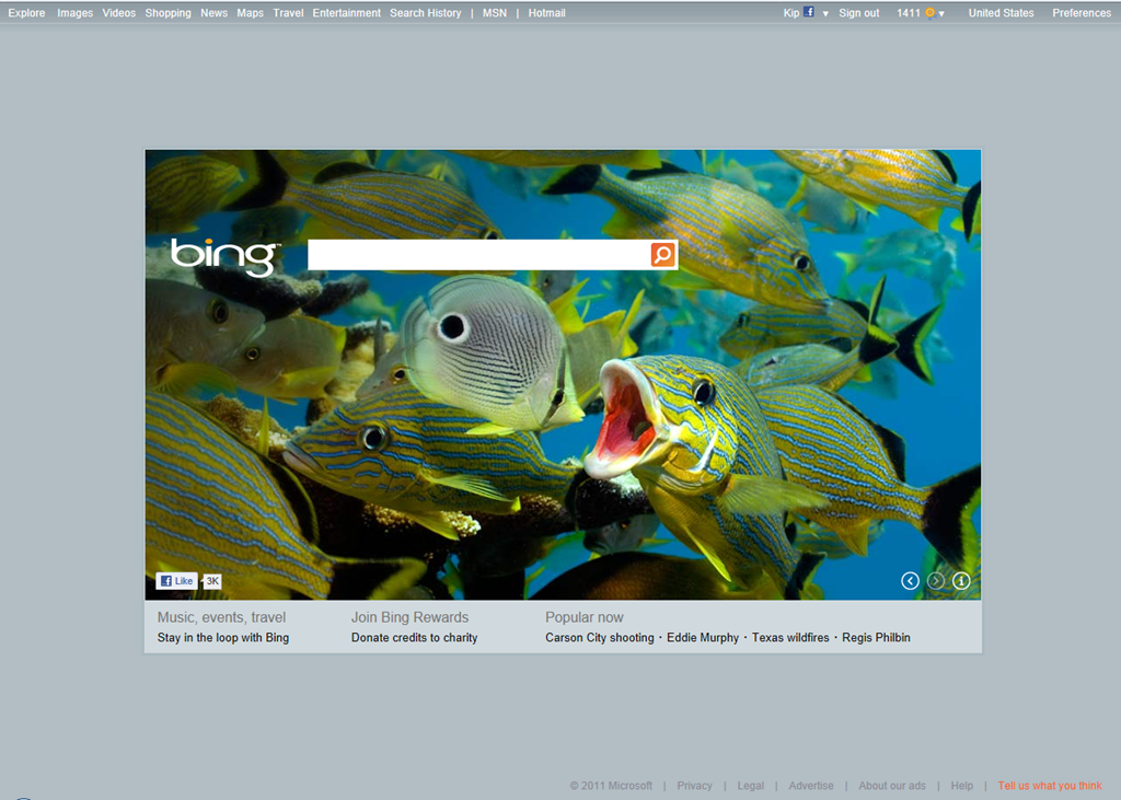 Bing Changes Its Home Page (more To Come?)