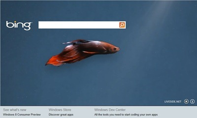 Bing for Windows 8 Consumer Preview